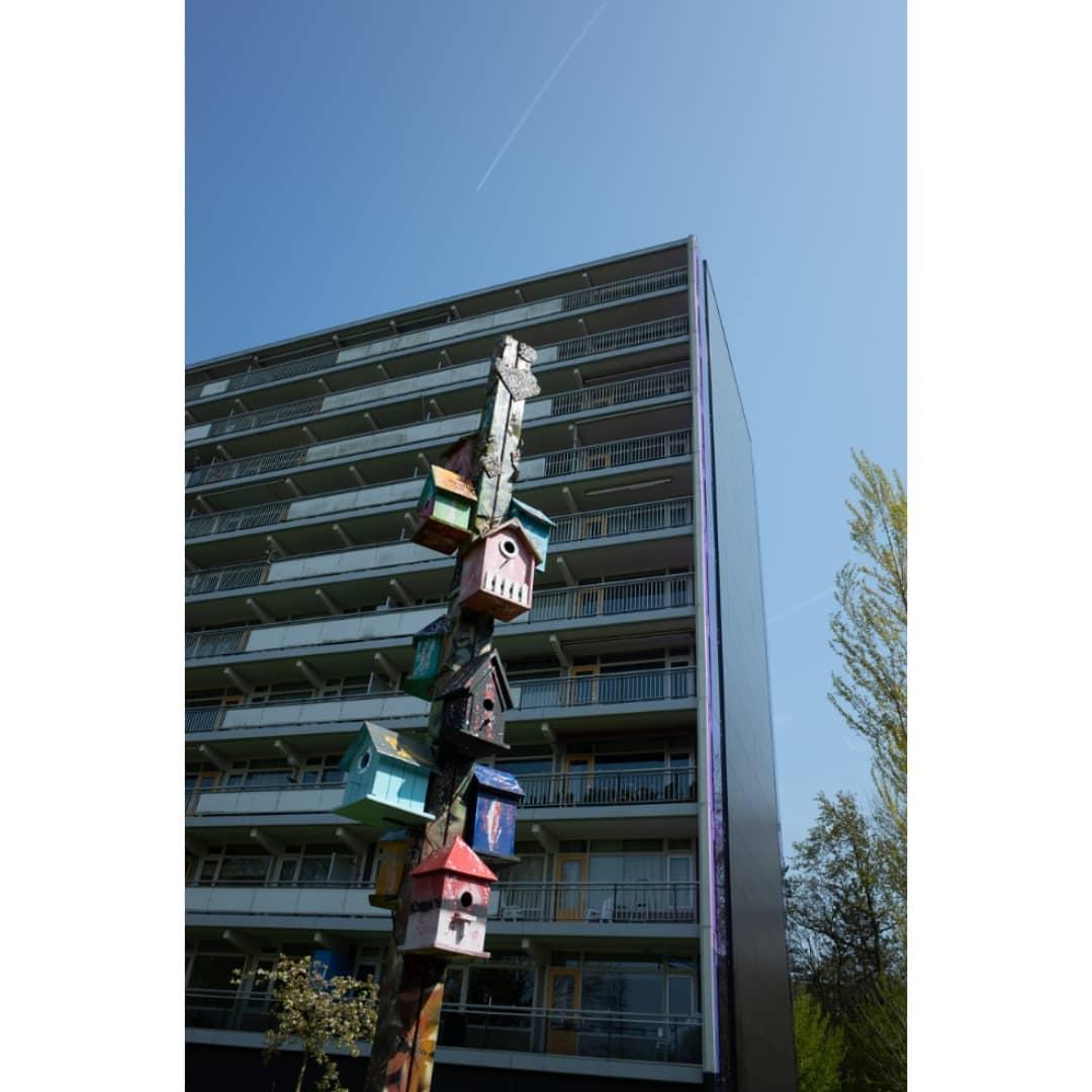 Birdflat . Follow @streettypographer . Urban Typography |  Photographer Noord Amsterdams Nieuwsblad |  Amsterdam Utrecht Genova |  Ricoh GR | Huawei Leica |  DM for collaboration